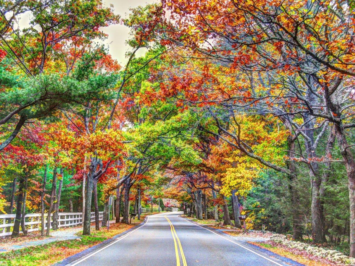 Open Roads